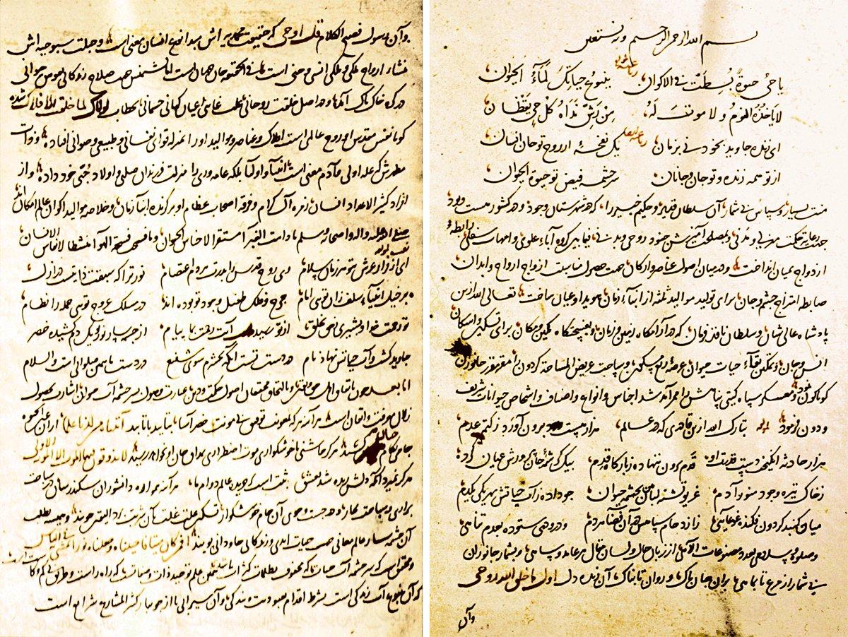 Hayvan Tdv Islam Ansiklopedisi